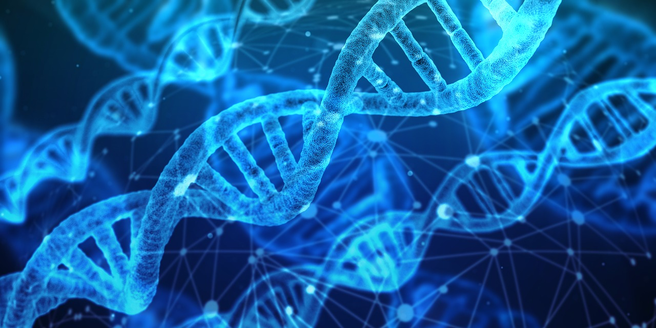 """""""DNA e PREDITTIVITA': L'IMPORTANZA DEL TEST GENETICO"""""""
